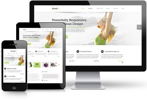 Mobile responsive website developer